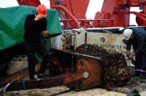 Джонатан Сноу (слева), доцент кафедры геофизики в Хьюстонском университете, осматривает мантийные  камни, извлеченные со дна Северного Ледовитого океана. (кликните картинку для увеличения)