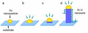 Подпись к картинке: Процесс роста нанопровода: (a) - наночастица золота размещается на подложке; (b) - в результате взаимодействия с веществом, в составе которого имеется элемент III группы периодической системы, образуется жидкий или твердый сплав; (c) - смешивание элементов III и V групп происходит на границе наночастицы и подложки; (d) - рост нанопровода. (кликните картинку для увеличения)