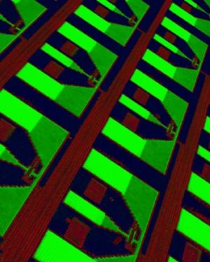 Фотография массива лавинных детекторов, разработанных IBM. Снимок получен при помощи оптического микроскопа. (кликните картинку для увеличения)