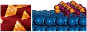 Граница между частицами оксида железа и платины содержит активные участки (слева – изображение полученное с помощью сканирующего туннельного микроскопа, справа - модель), которые обеспечивают выделение кислорода и таким образом выступают посредниками в окислении CO (цвета в модели Fe – фиолетовый, O – оранжевый, Pt – синий). (кликните картинку для увеличения)
