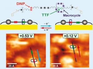 В восстановленном состоянии макроцикл выбирает TTF, а окисление TTF приводит к перемещению кольца вдоль нити к участку DNP (голубой цвет). Если TTF затем восстановить, то кольцо вернеться назад (красный цвет). (кликните картинку для увеличения)