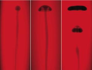 Взаимодействие двух жидкостей, сопровождающееся самоподдерживающейся химической реакцией, может порождать фигуры наподобие колец табачного дыма. (кликните картинку для увеличения)