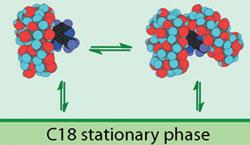 Использование циклодекстринов в хроматографии может увеличить количество используемой воды.