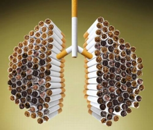 Курение – опасная для жизни вредная привычка, повышающая вероятность развития раковых заболеваний. (кликните картинку для увеличения)