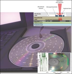 Клетки в микрожидкостных каналах мешают лазерному лучу в стандартном приводе дисков и обусловливают ошибки при чтении и декодировании цифровой информации, прежде записанной на CD. (кликните картинку для увеличения)