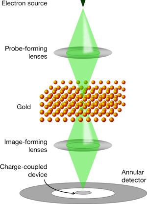 Схематическое изображение разработанной австралийскими учеными модификации электронного микроскопа.