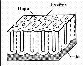 Схематическое изображение пористой оксидной пленки.