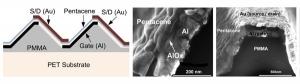 Схема, а также изображение, полученное при помощи методики сканирующей электронной микроскопии, предложенной конструкции органического тонкопленочного транзистора. (кликните картинку для увеличения)