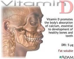 Витамин D способствует усвоению кальция, необходим для нормального развития костей и зубов.