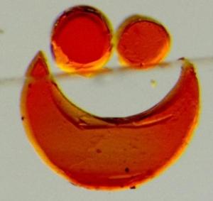 Фрагменты БЖ-геля, формирующие улыбающееся лицо. (кликните картинку для увеличения)