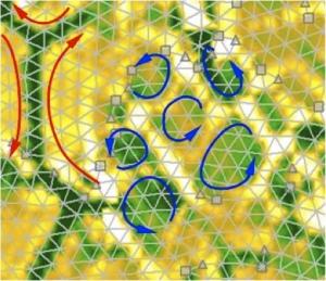 Цифровое представление сфотографированной в ходе эксперимента модели двумерной жидкости. (кликните картинку для увеличения)