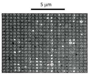 Изображения метаповерхности, полученное при помощи сканирующего туннельного микроскопа. (кликните картинку для увеличения)