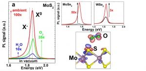 Изменение фотолюминесценции полупроводникового монослоя TMDC под воздействием различных газов. (кликните картинку для увеличения)