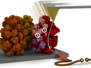 Анализ транспорта заряда через единичную наноструктура на поверхности оксида железа. (кликните картинку для увеличения)