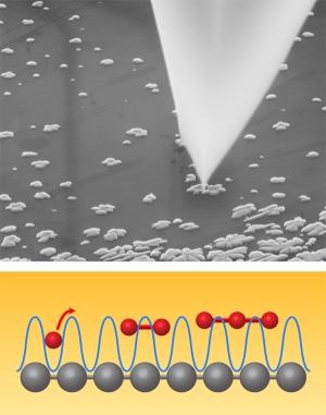 Изображение процесса перемещения наночастиц по поверхности графита с помощью зонта АСМ. (кликните картинку для увеличения)