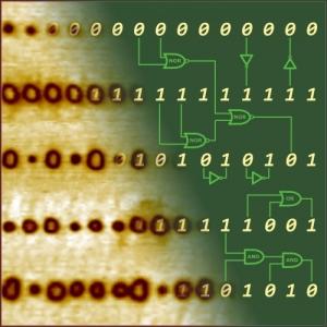 Некоторые из последовательностей доменов, сформированные учеными на эксперименте. (кликните картинку для увеличения)