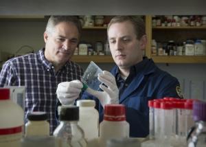 Бэрри Виллардсон и аспирант Крис Трейси (Chris Tracy, соавтор проведённого исследования). (кликните картинку для увеличения)