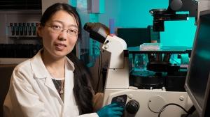 Ке Ли — PhD Глэдстоунского института. (кликните картинку для увеличения)