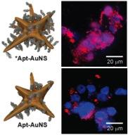 Сравнение эффективности золотых наночасти с обычной