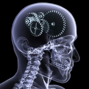 Память — психическая функция (умственная деятельность), позволяющая сохранять, накапливать и воспроизводить информацию. (кликните картинку для увеличения)