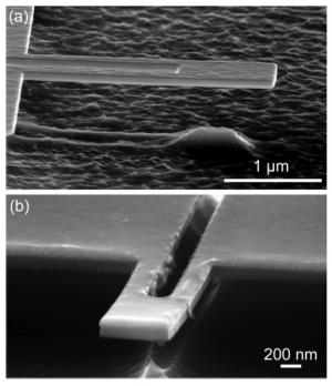СТМ-изображения нанокантиливеров, покрытых тонкой и толстой полимерной пленками. (кликните картинку для увеличения)