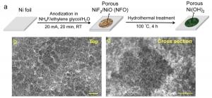 Схематическое изображение процесса производства и структура нанопористого гидроксида никеля. (кликните картинку для увеличения)